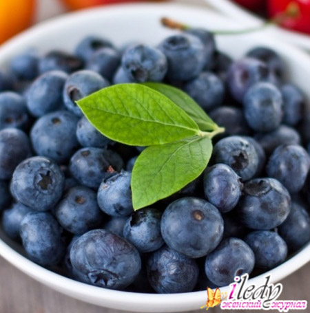 какие ягоды можно принимать беременным
