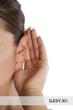 Форма ушей и характер. О чем говорит форма ушей?