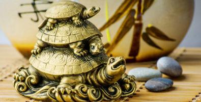 Символ фен шуй черепаха: панацея от многих бед