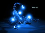 Как заинтересовать, завоевать, покорить мужчину скорпиона?