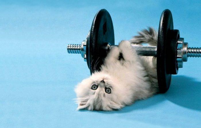 Несложные способы похудения для ленивых