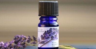 Лавандовое масло для волос — полезные свойства и рецепты