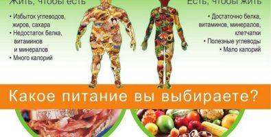 Рациональное питание для похудения. Основы и принципы рационального питания