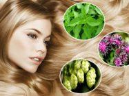 Травы для волос — от выпадения и для роста, против перхоти и ранней седины