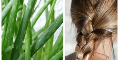 Маски для волос с алоэ — состав сока, применение и польза для волос и кожи головы