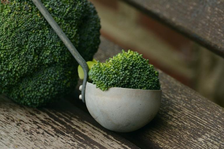 диета ml отзывы 1 день питание до 12